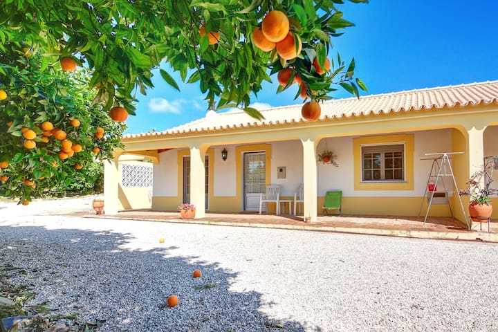 Farmhouses with pool in  Tavira - Tavira - Villa