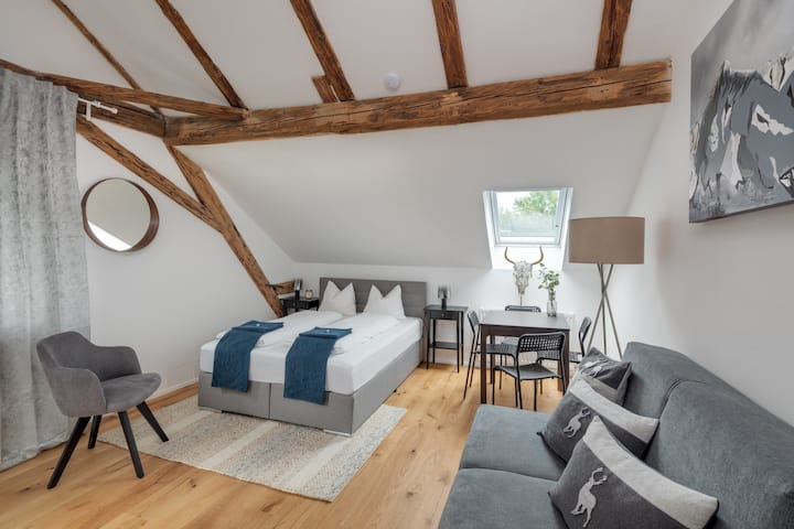 Modern Cozy Apartment w/ Convenient Location