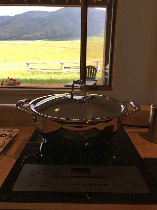 Induction cooktop (with a great view!)