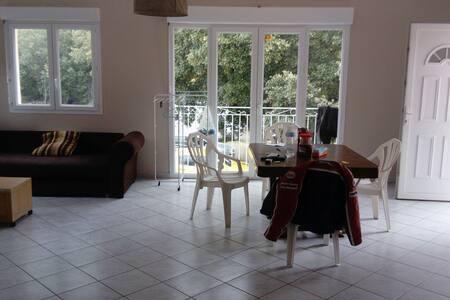 Bel appartement calme. - Morosaglia, Corse, FR - 公寓