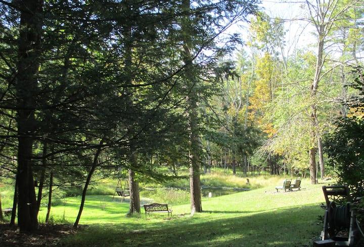 BIG HOME w. Pond, Backyard,  Opt 1 Br Apt Xtra