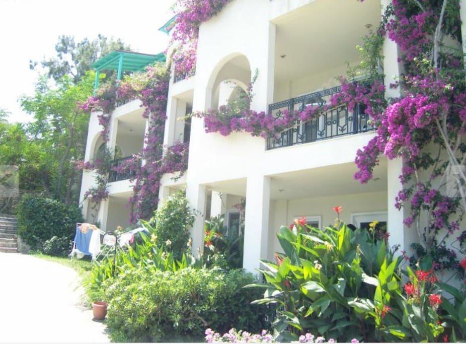 Entrance to the apartment (located on ground floor for easy access).