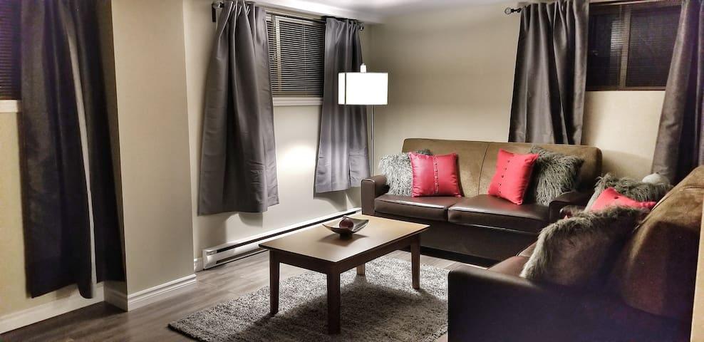 A.P.Rentals 2 BDR Cozy Comfortable Apt. min 2 Ott