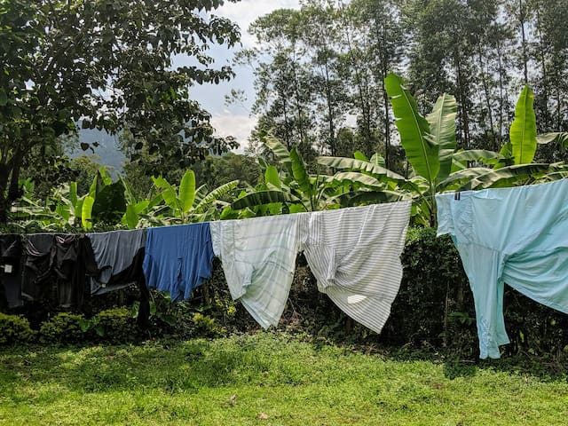 Hanging clothes to dry in the front yard