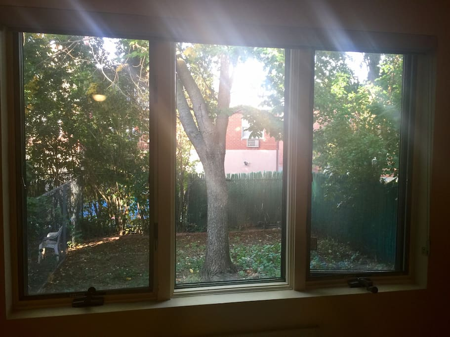 View of the private backyard from the living room bay window.