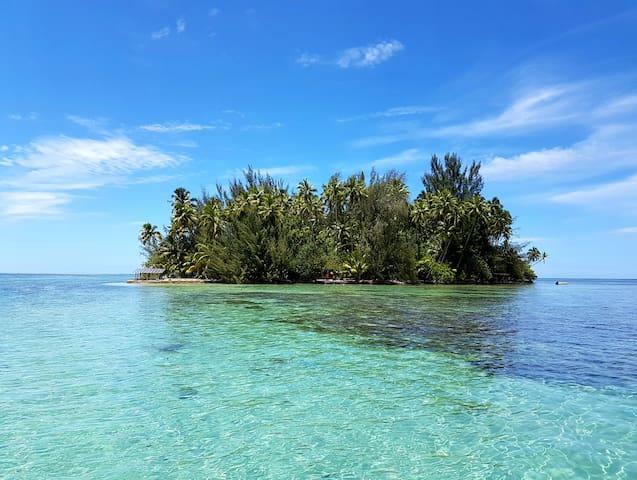 Ile privée Robinson Crusoe - Papara - Island