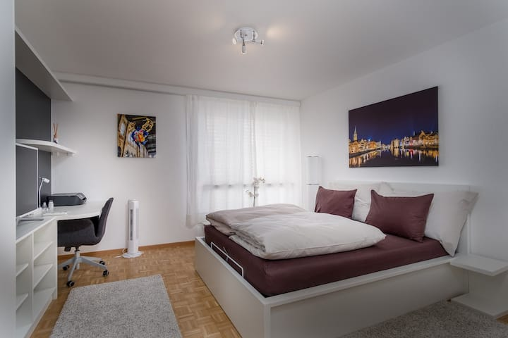 Great Studio in Zurich center #503