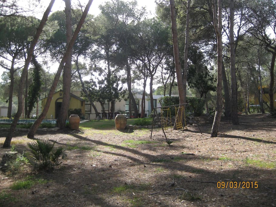Vista de la casa desde la pinada
