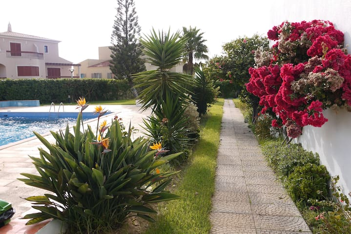 Ocean view, pool and beach within walking distance - Sagres - Apartment