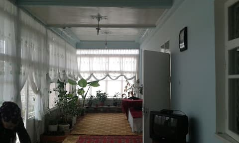 House near Tashkent Дача в Чингелди