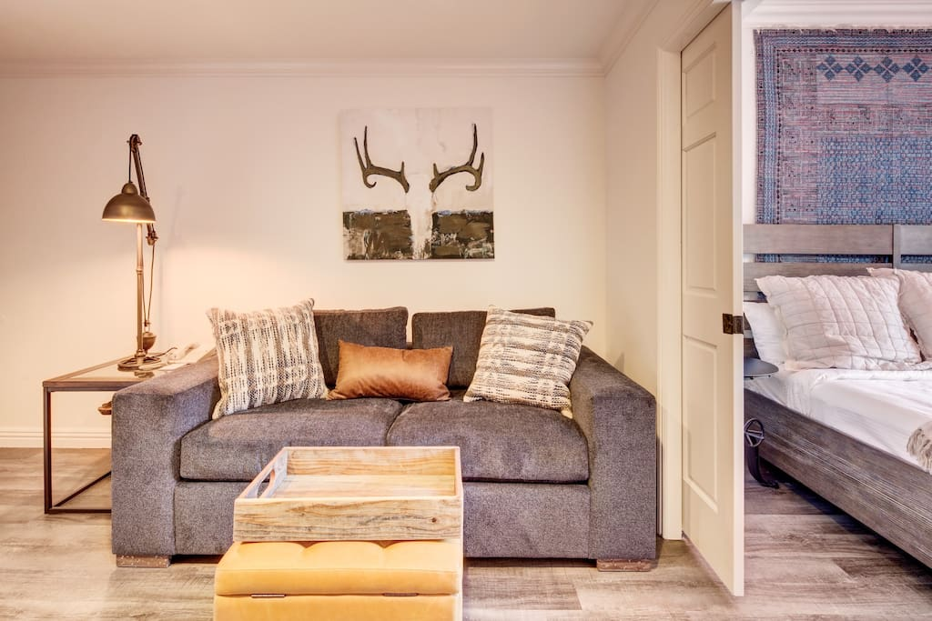 Living Area - Pullout Queen Sofa