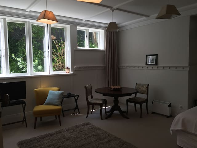 Herne Bay/Ponsonby Studio Apartment - Auckland - Appartement