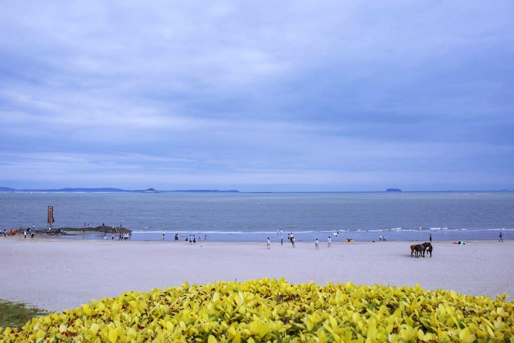 环岛路沙滩
