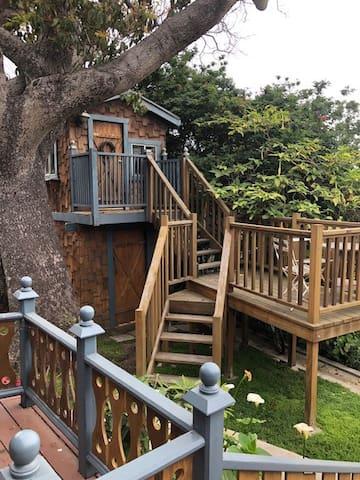 Treehouse Daytime