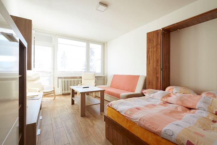 Apartmán v Jiřetíně / Tanvaldský Špičák - Jiřetín pod Bukovou - Apartemen