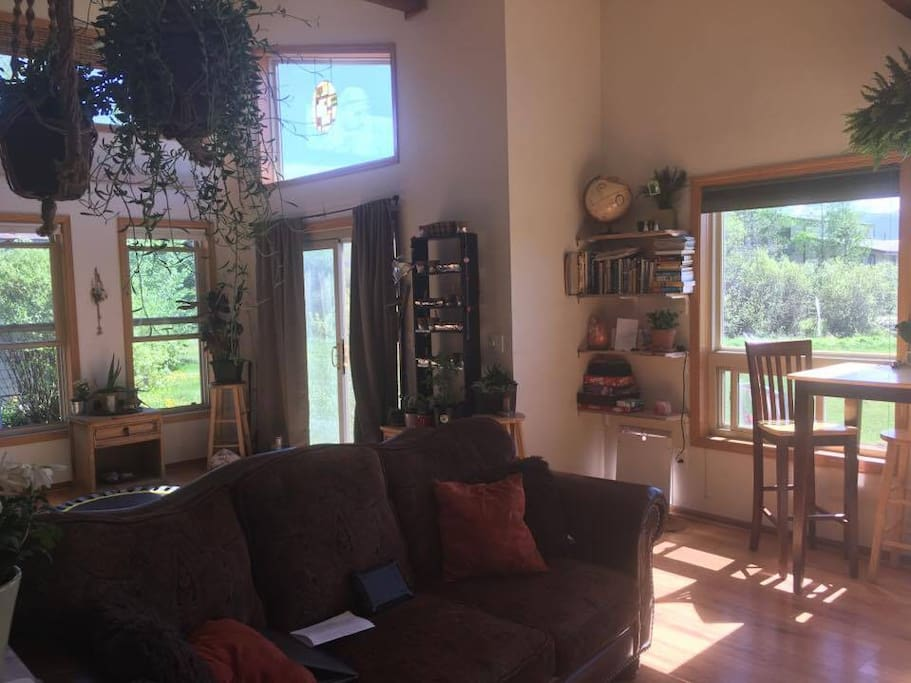 The living space, includes book, games, maps, movies, Wii, xBox360, TV, cable.