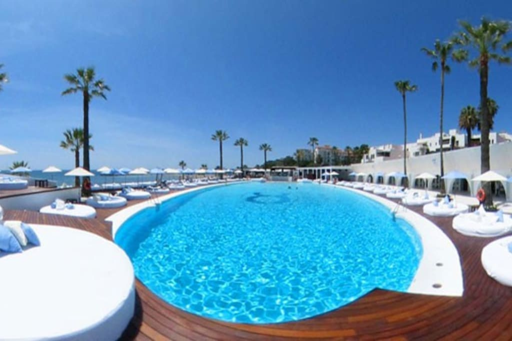 The world famous Ocean club with free entry