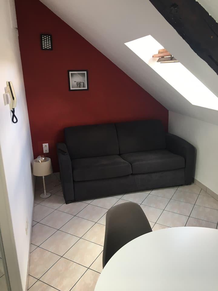 Appartement centre ville Auxerre (Yonne)