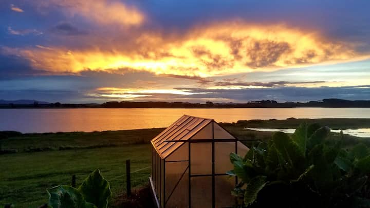 Lake Whangape Farm Stay