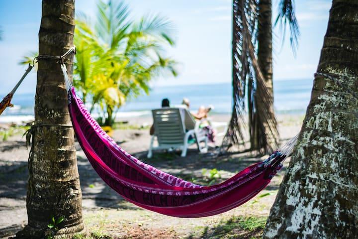 Hotel Tortuguero Beach