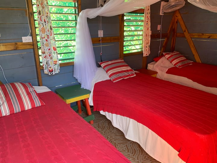 Judy House Negril  - Jackfruit Private Double Room