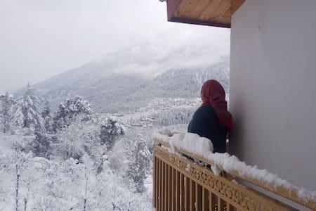 North Himalayan Retreat Home Stay Koshla Manali