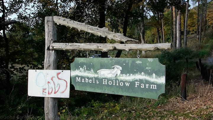 Mabels Hollow Farm in Litchfield County