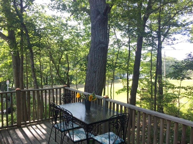 TreeTops apartment overlooking Kennebunk River