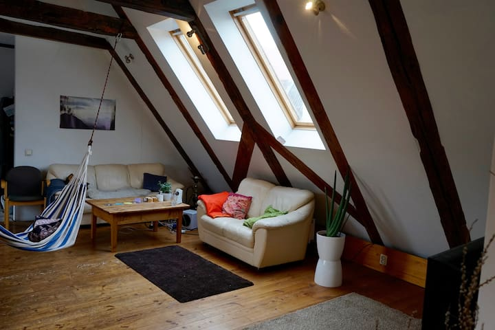 Private cosy room in Old Town with Sauna - Riga - Apartamento