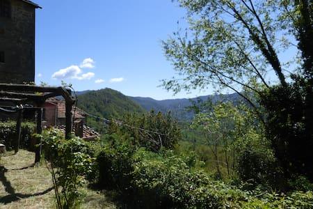 Rustic flat in Tuscany hills - Longoio-mobbiano