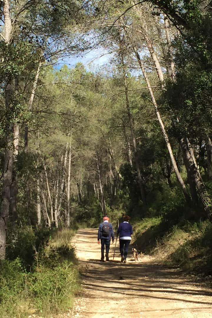 Caminos entre naturaleza mediterránea