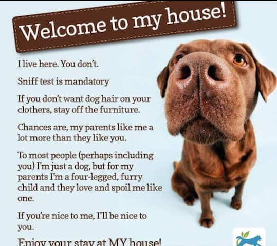 The pets outnumber the humans!!