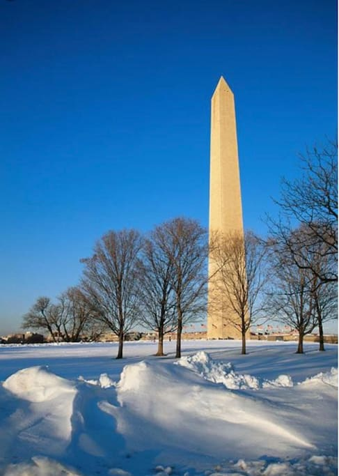 Let's have an experience winter in Washington DC, spectacular view - hop on the metro only less than 20 minutes to get you to DC-