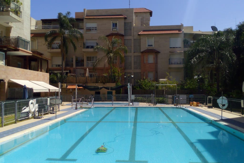Pleasant Garden Apartment Apartments For Rent In Rehovot