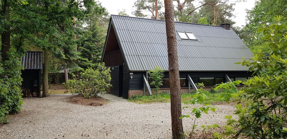 Cosy 6-9 person bungalow in the woods