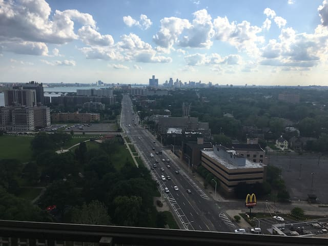 Top 10 Best Views of Detroit Handsdown