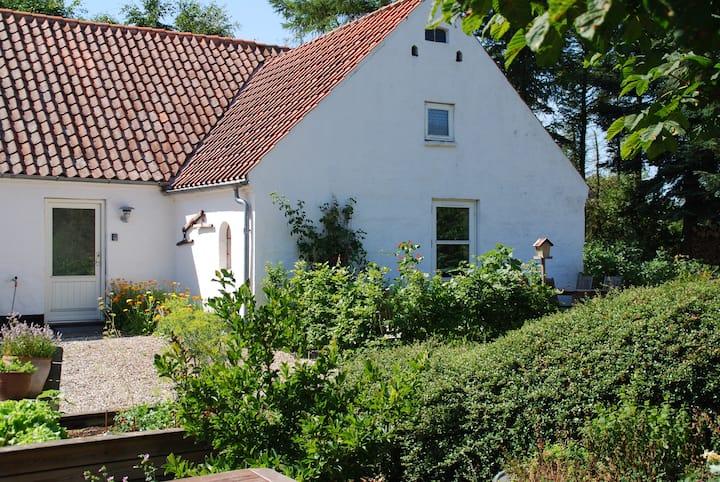 Den Gl. Hestestald i Viborg