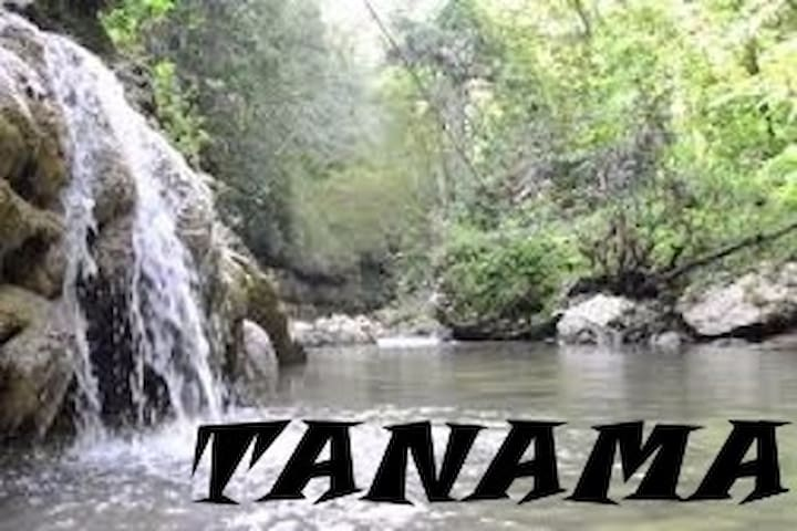 TANAMA Park