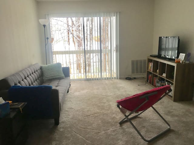 Cozy One Bedroom Apt near Stadium, Metro, Shopping - Largo - Byt