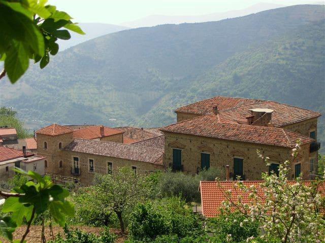 PALAZZO BARONALE vicino Acciaroli - Serramezzana - Apartamento