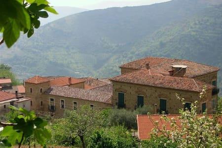 PALAZZO BARONALE vicino Acciaroli - Serramezzana - Lägenhet