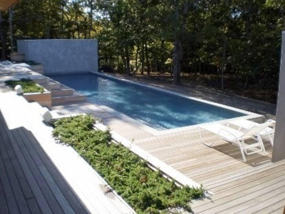 beautiful gunite pool