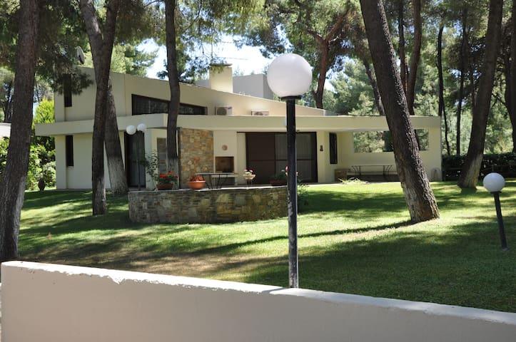Sani Maria's villa Stavronikita