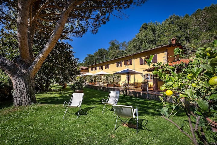 Holiday in Tuscany near Florence - Reggello - House