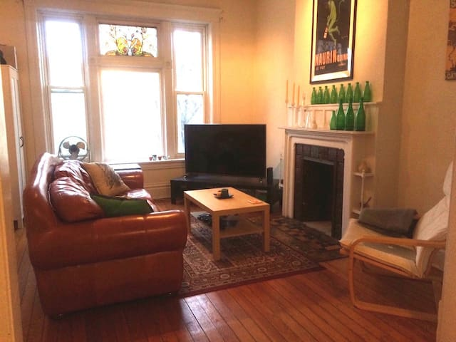 Cozy private room on Chicago's west side - Chicago - Apartemen