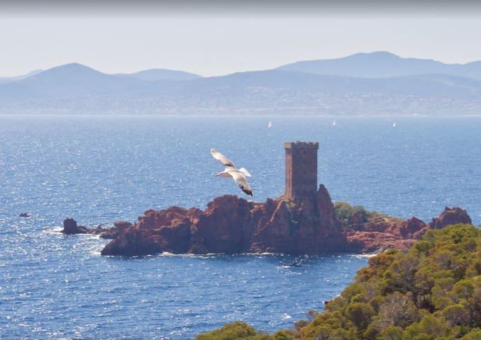 l'île d'or en face du Cap Dramont.