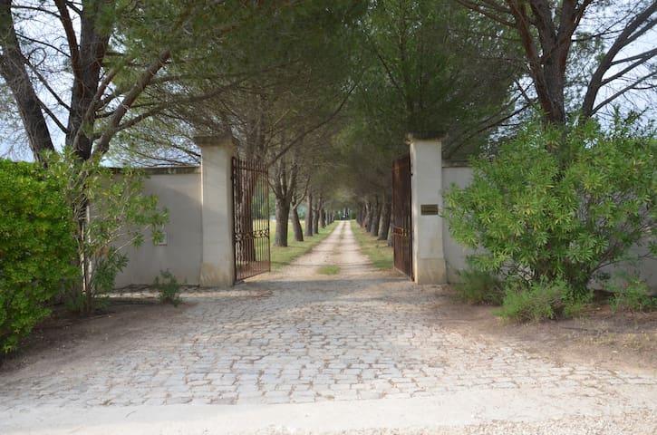 Domaine Shambala - Pavillon de l'Arc - Aix