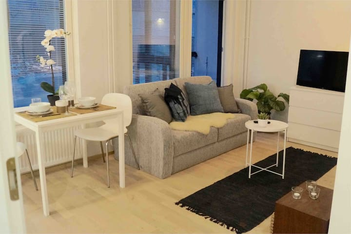 New studio in trendy new area close to city center