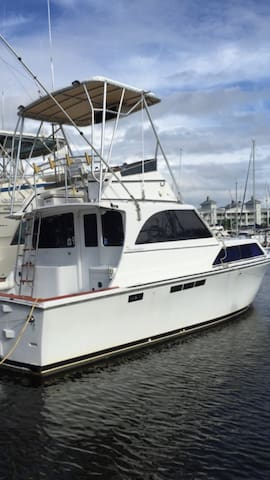 """Never Better"" fishing yacht - Port Canaveral - Barco"