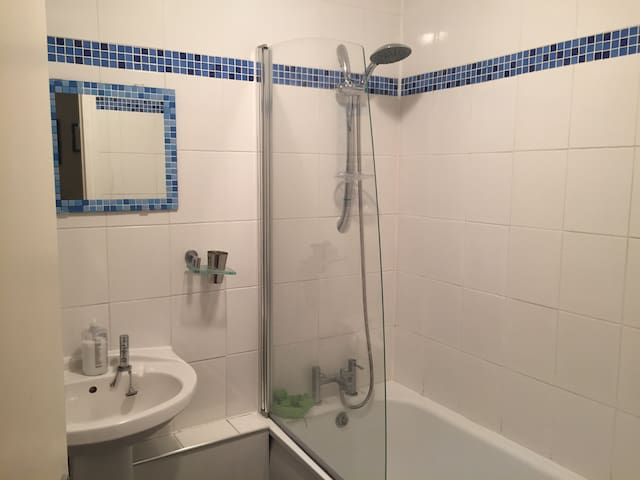 Big room for 1,2, or 3  People - London - Lägenhet